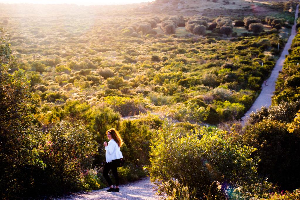 Masseria Potenti: passeggiate nella natura