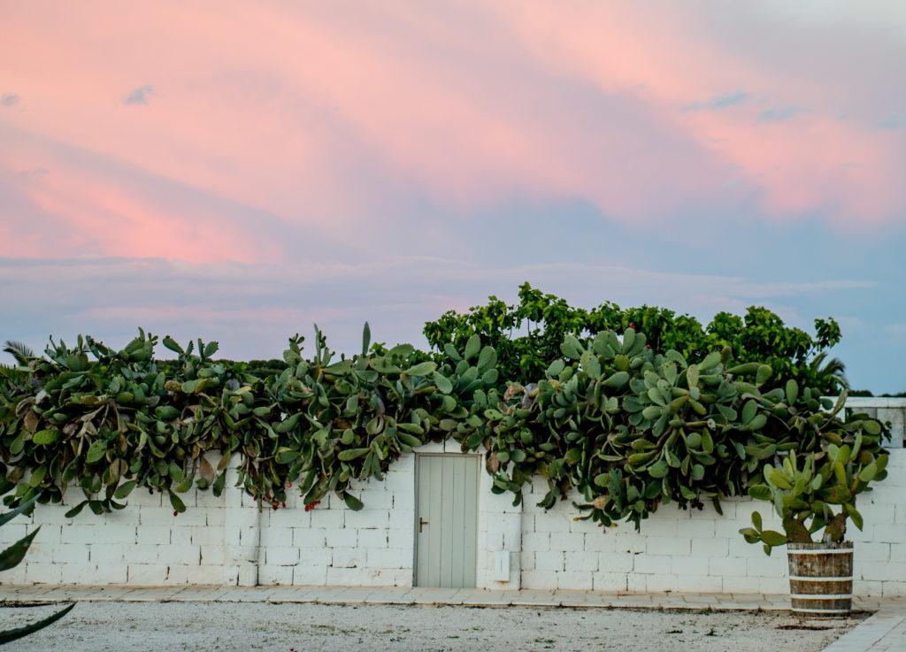 Masseria Potenti: tramonto